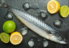 Fresh mackerel on a black slate stone with spices, herbs, lemon, lime and salt. View from above stock images