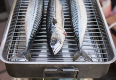 Fresh mackerel fish. On the grill Royalty Free Stock Photos