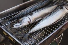 Fresh mackerel fish. On the grill Stock Photography