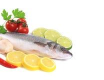Fresh mackerel fish with lemon  and lime. Isolated on white Stock Image