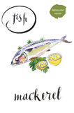 Fresh mackerel fish with lemon and salad Royalty Free Stock Photo