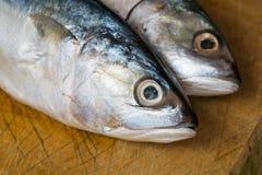Fresh Mackerel Fish On Wooden Stock Photos