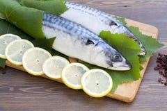Fresh mackerel in grape leaves Stock Photography
