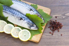 Fresh mackerel in grape leaves. With lemon slices stock photography