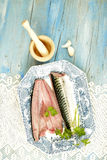 Fresh mackerel Royalty Free Stock Photography