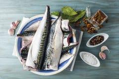 Fresh Mackerel To Cook Stock Photo