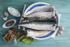 Fresh Mackerel To Cook