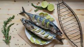 Fresh mackerel. Two raw fresh mackerel fishes with lime on white dish on wooden Stock Photos