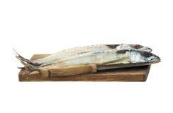 Fresh mackerels Royalty Free Stock Photo