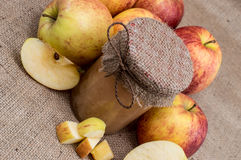 Fresh made applesauce Royalty Free Stock Photography