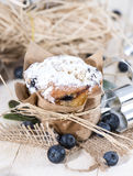 Fresh made Blueberry Muffins Royalty Free Stock Images