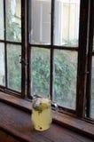 Fresh made lemonade with mint Royalty Free Stock Photo
