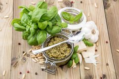 Fresh made Pesto Sauce Royalty Free Stock Photos