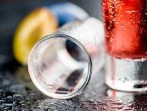 Plum Liqueur, selective focus Stock Photography