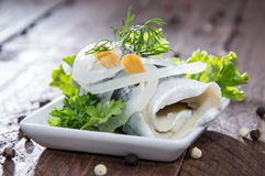 Fresh made Rollmop on a plate Royalty Free Stock Image