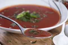 Fresh made Tomato Soup Royalty Free Stock Photography