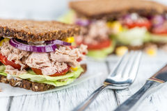 Free Fresh Made Tuna Sandwich With Wholemeal Bread (selective Focus) Stock Photos - 79891103