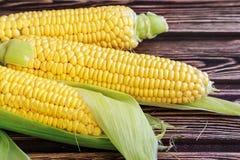 Fresh maize cob Royalty Free Stock Photos