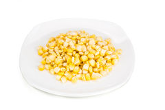 Fresh maize corn kernels on plate against white background Stock Image