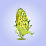 Fresh maize 01 Royalty Free Stock Photography