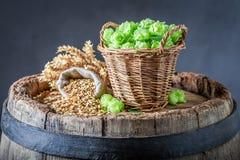 Fresh malt and hop on wooden barrel. On dark background stock photo