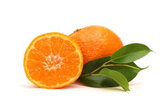 Fresh mandarin fruits Stock Photography