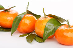 Fresh mandarin fruits Royalty Free Stock Image