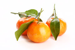 Fresh mandarin fruits Royalty Free Stock Photos