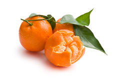 Fresh mandarin with green leaves Stock Images