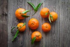 Fresh mandarin oranges fruit with leaves Stock Images