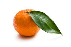 Fresh mandarin Stock Photo