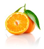 Fresh mandarine fruit with cut and green leaves. Isolated on white background royalty free stock photo