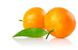 Fresh mandarine fruits with green leaves isolated Royalty Free Stock Photos