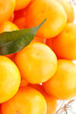 Fresh mandarines Stock Photography