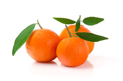 Fresh Mandarins Royalty Free Stock Photography