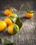 Fresh mandarins Royalty Free Stock Images