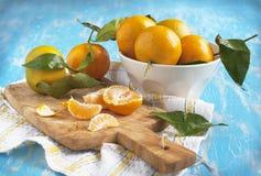 Fresh mandarins Royalty Free Stock Photos