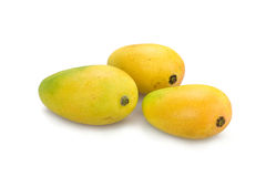 Fresh mango Royalty Free Stock Photos