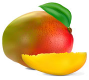 Fresh mango. Fruit with cut and green leafs vector Stock Photo
