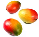 Fresh mango fruits Royalty Free Stock Photo