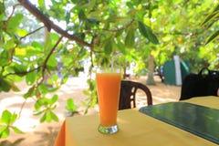 Fresh mango juice Royalty Free Stock Photography