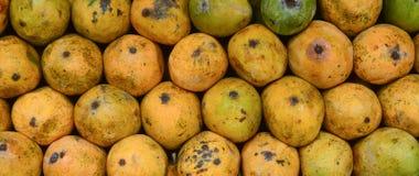 Fresh mango at the market Royalty Free Stock Images