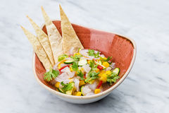 Fresh Mango Salsa with raw fish filet in brown plate Royalty Free Stock Photography