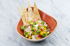 Fresh Mango Salsa with raw fish filet in brown plate Royalty Free Stock Images