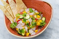 Fresh Mango Salsa with raw fish filet in brown plate Royalty Free Stock Image