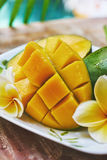Fresh mango on a wooden tabel with tropical background. Soft focus. Fresh mango in the plate on a wooden tabel with tropical background. Soft focus Royalty Free Stock Images