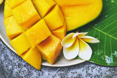 Fresh mango on a wooden tabel with tropical background. Soft focus. Fresh mango in the plate on a wooden tabel with tropical background. Soft focus Stock Image