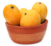Fresh Mangoes on a clay bowl Royalty Free Stock Photography