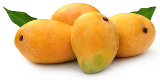 Fresh Mangoes with green leaves Royalty Free Stock Images