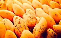 Fresh mangoes Royalty Free Stock Photos